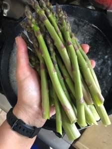 asparagus arancini