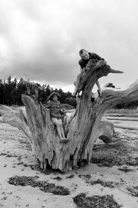 Exploring Rathtrevor stump.