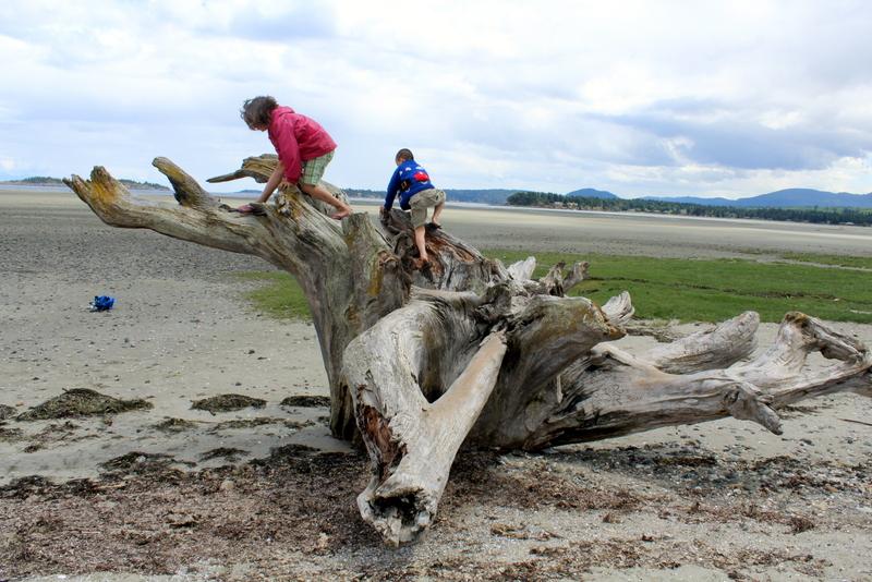 Exploring Rathtrevor beach Vancouver Island B.C.