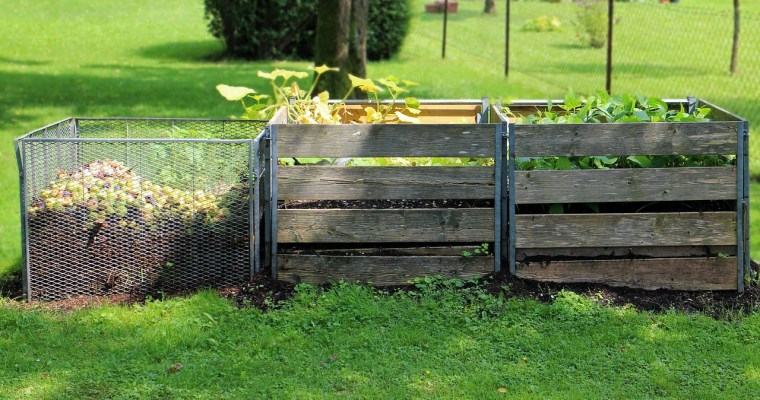 8 Ideas to Make Your Homestead More Sustainable