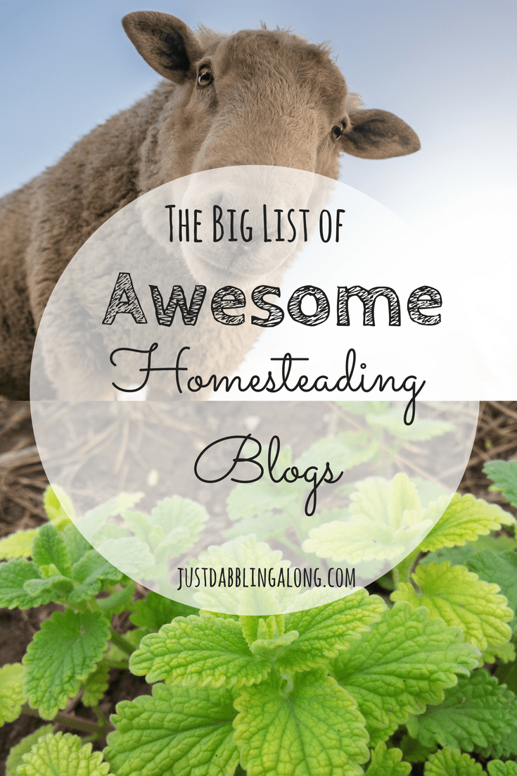 I believe homesteading is really a community activity and to be a better homesteader myself, I need to learn from other people who have been there before and know what they are doing. In the spirit of community, I wanted to share with you today some of my favorite homesteading blogs.