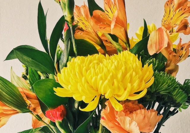 Know About The Gorgeous Flowers which are used In Bouquets