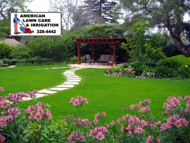 Effective insights about professional landscaping