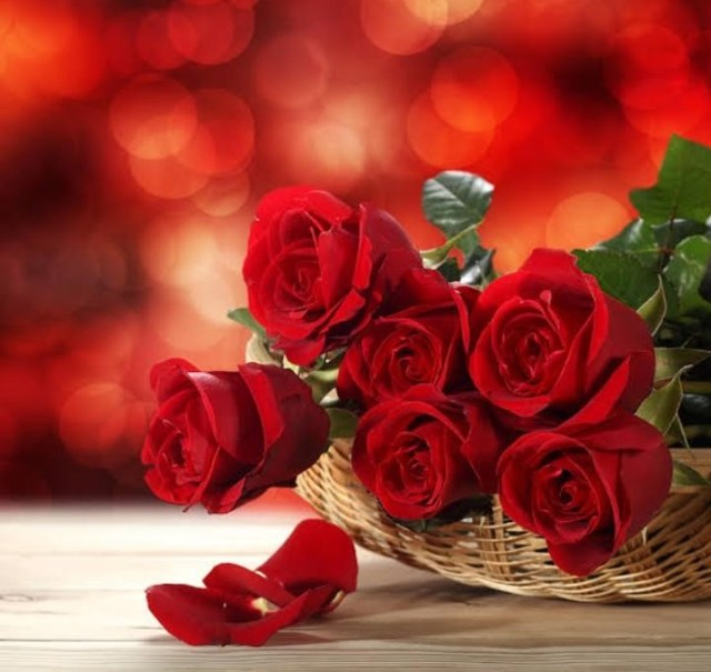 TOP 5 FLOWERS TO CONVEY YOUR WISHESH ON VALENTINES DAY