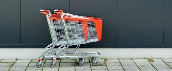 What is exactly shopping cart device and a user interface?