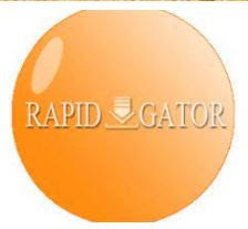 What is a Rapidgator Net Premium Link Generator?