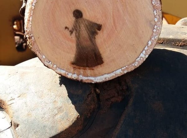 images-of-jesus-discovered-in-a-tree-cut2 Online Controversy: Images Many Believed to be Jesus Christ found in cut tree branch.