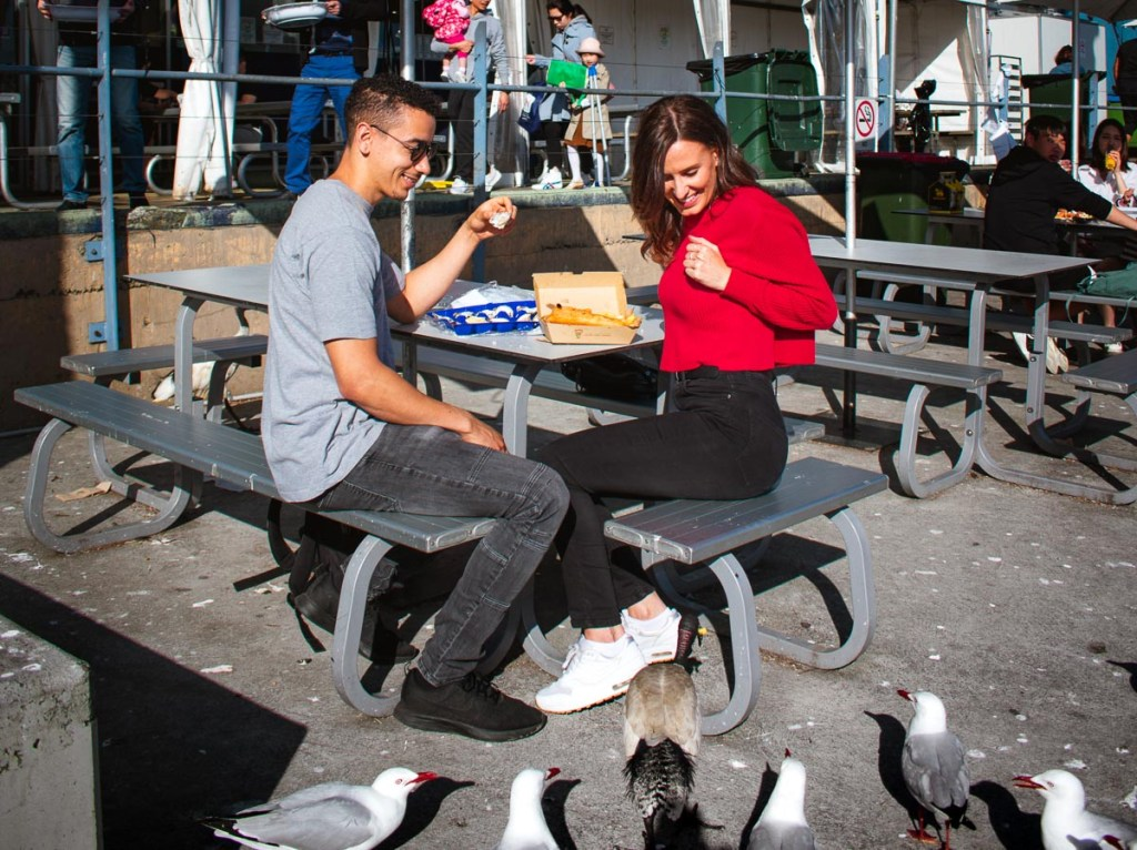 fish and chips outside with seaguls