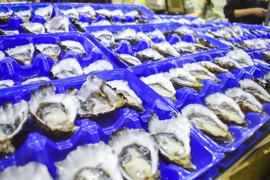 dozens of oysters