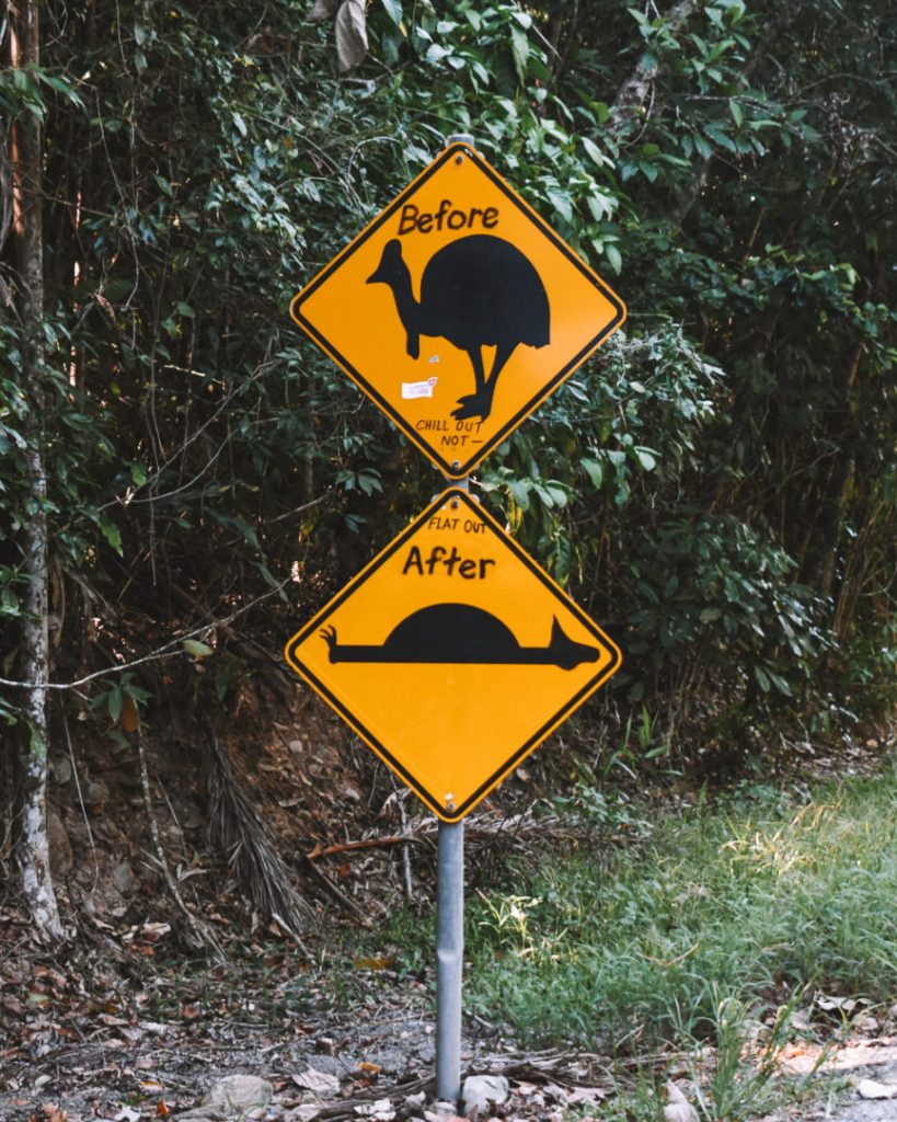 Daintree Cassowary funny road signs