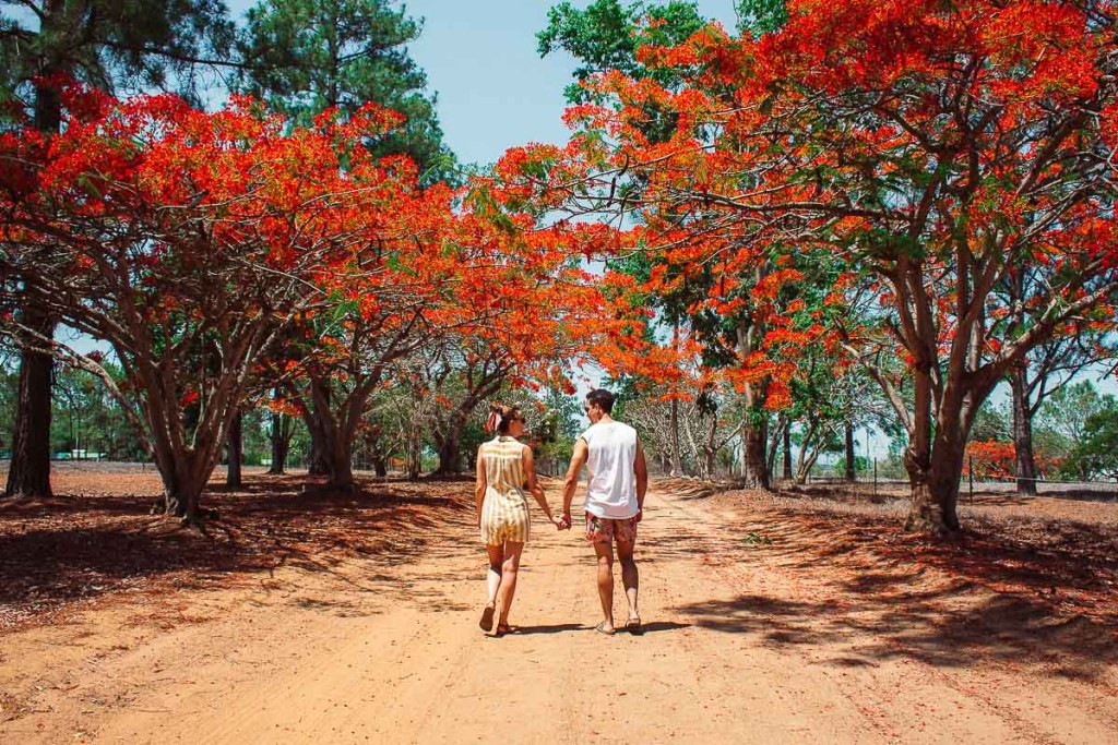 couple walking on Granite Gorge red dirt under red trees