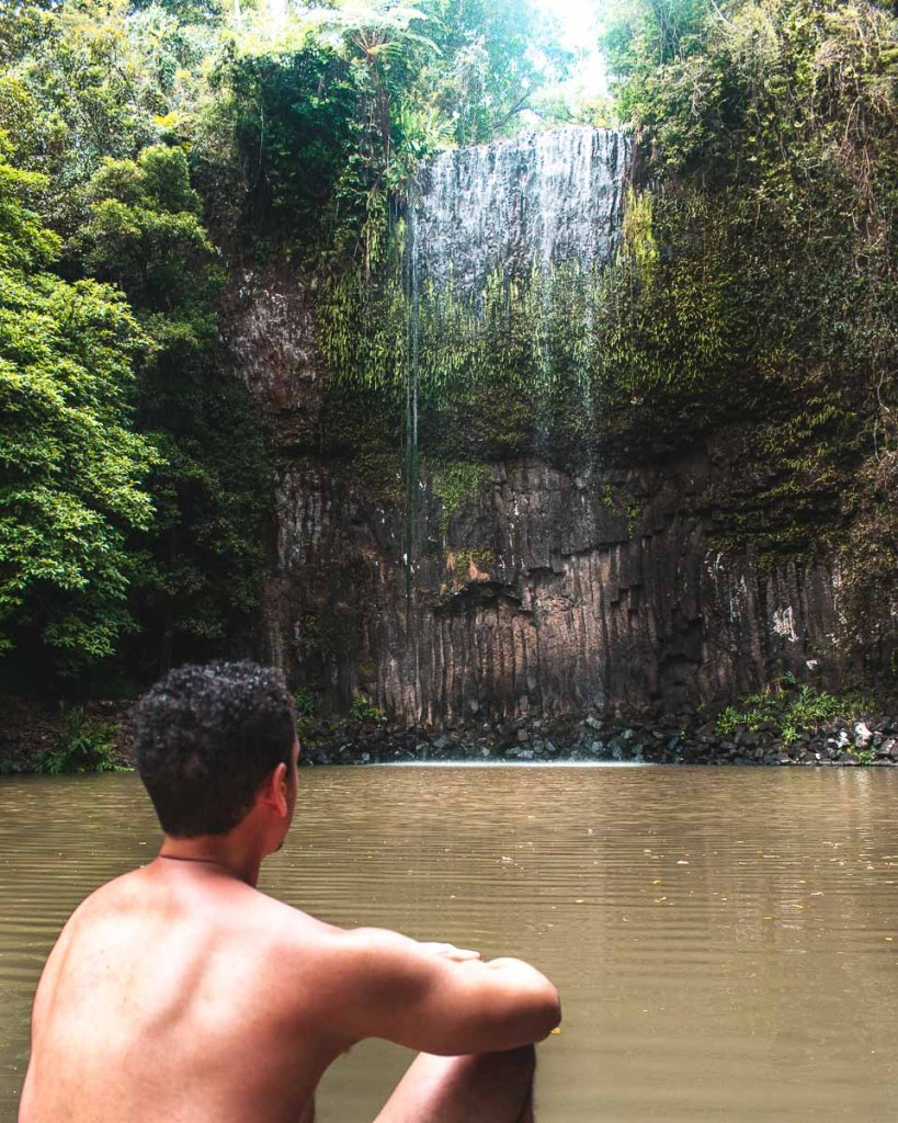 Woody looking at Millaa Millaa Falls waterfall