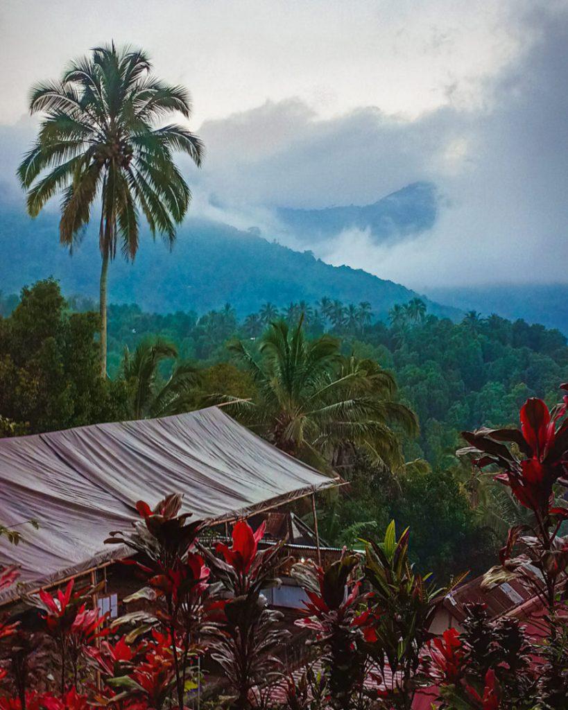 Munduk Drive Bali Views