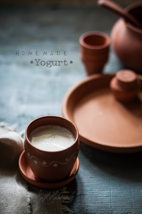 How to make Thick Homemade Yogurt with or without starter + Tips