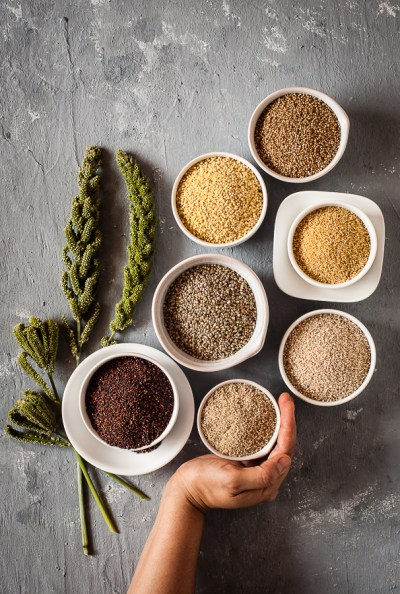 Different types of Millets
