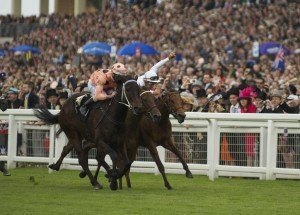 Black Caviar narrowly winning at Royal Ascot - Photo by Sarah Ebbett