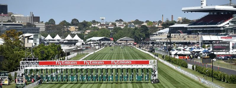 Melbourne Cup Field