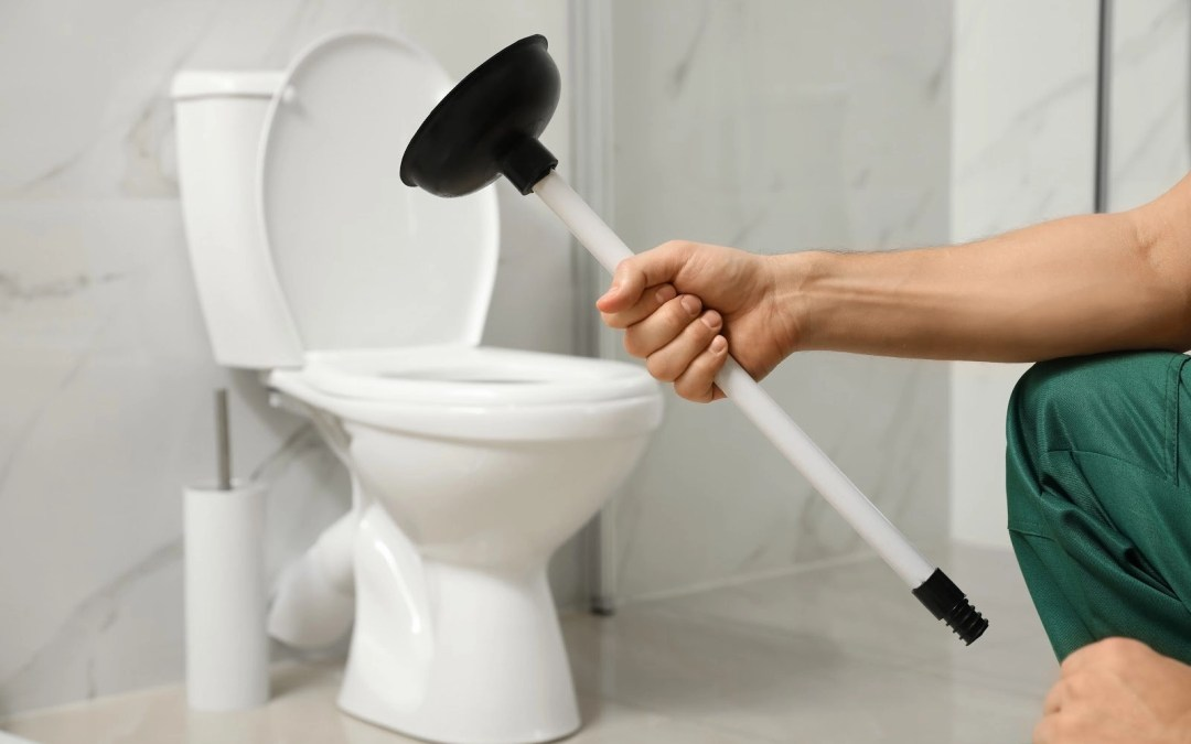 Simple Advice for Unclogging Your Toilet