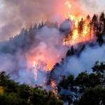 Pulmón del Mundo en llamas