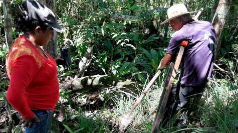 Bosque de la Memoria de Juan Pablo García Garavito Mapiripán
