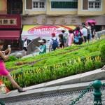 Steady Pose in Macau
