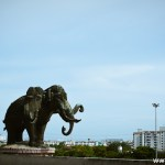 The largest elephant in the world