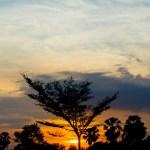 Sunset during Spring