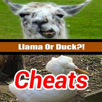 Llama or Duck Cheats