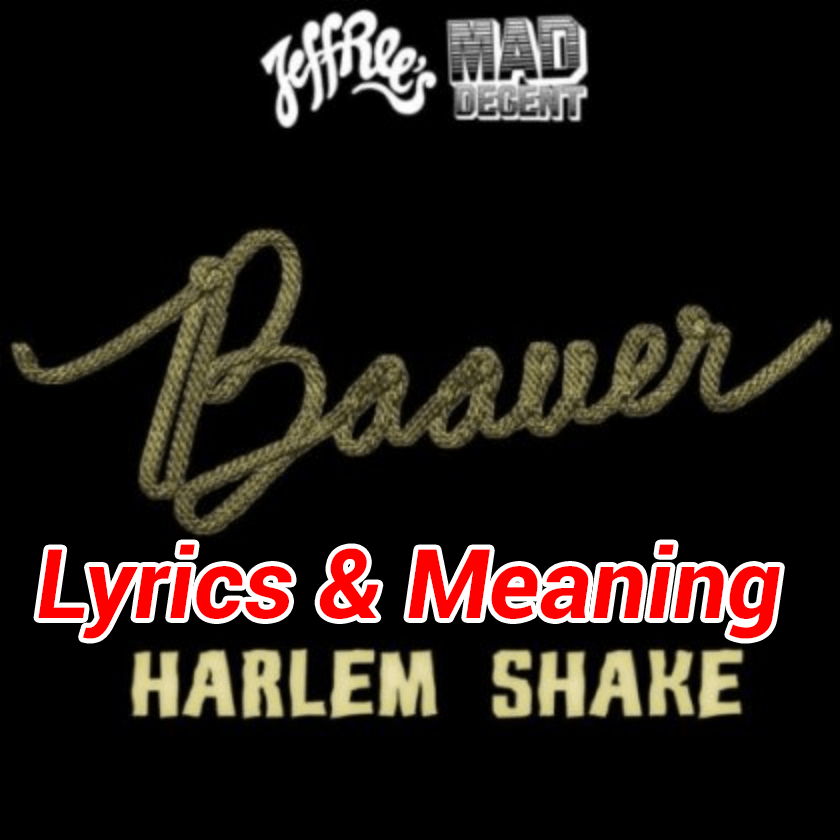 Harlem Shake Lyrics Meaning