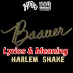 Harlem Shake Song Lyrics and Meaning