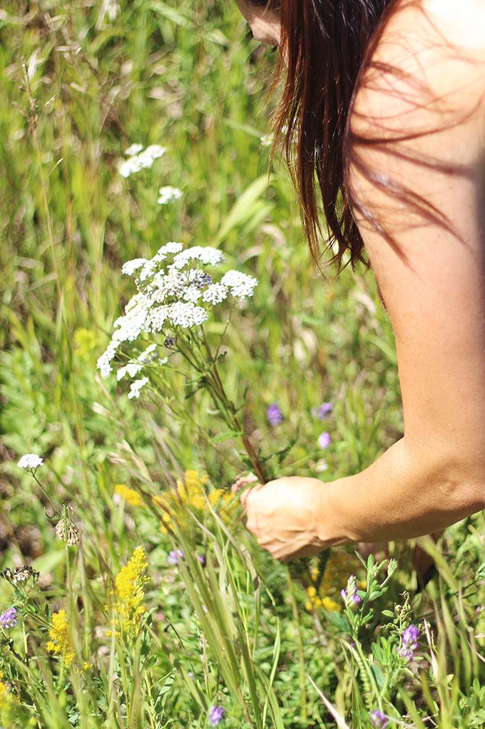 Foraged Prairie Wildflower Bouquet | Prairie Foraging Guidelines | Calgary, Alberta, Canada // JustineCelina.com