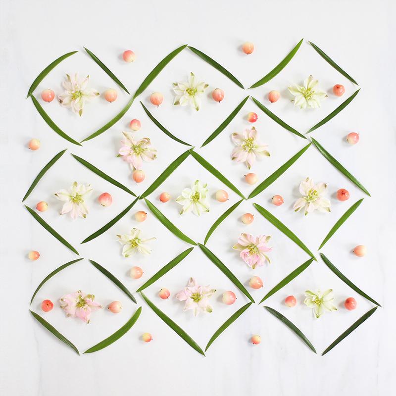 Digital Blooms August 2017 | Free Desktop Wallpapers | Design 2 // JustineCelina.com x Rebecca Dawn Design