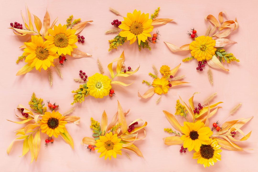 DIGITAL BLOOMS OCTOBER 2020 | FREE DESKTOP WALLPAPER | Free Fall / Autumn 2020 Floral Desktop Wallpapers featuring Alberta grown Sunflowers, Yellow Zinnias, Sulfur Cosmos, Goldenrod, Starry False Lily of the Valley, Rosehips and Crested Wheatgrass on an Pantone Autumn/Winter 2020/2021 Rose Tan background | Free Sunflower Floral Wallpapers for Fall | Boho Flower Fall 2020 Tech Wallpapers | The Best FREE Fall/Autumn Tech Wallpapers | Free Floral Tech Wallpapers Fall 2020 // JustineCelina.com