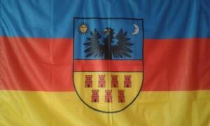Steagul Transilvaniei e luat din fondul stemei; jos galben, mijloc roșu și sus albastru. Asta subliniază așa-zisul steag al Transilvaniei: absența românilor din istoria Transilvaniei.