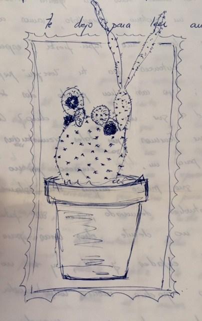 evaristo cactus