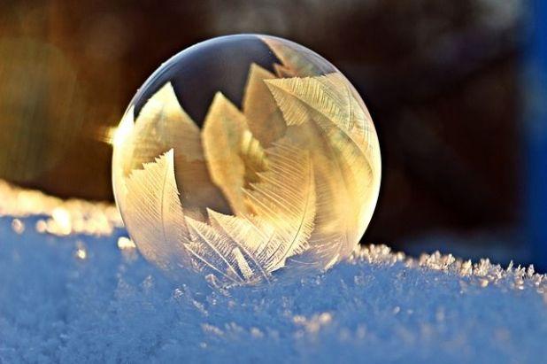 opositores burbuja