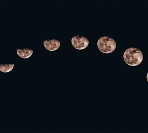 maancyclus