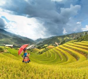 meisje rode paraplu op rijstveld