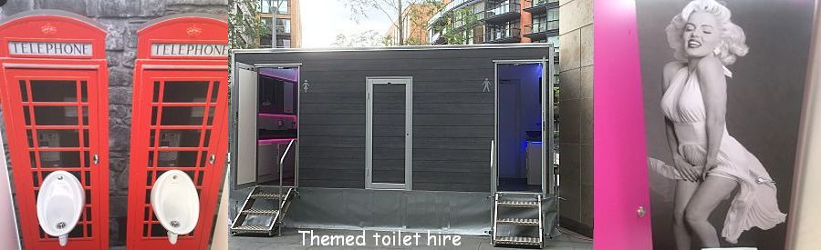 themed wedding toilets