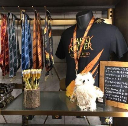 Harry Potter and The Cursed Child scatti fan (4)