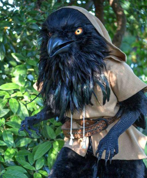 corvo di Dungeons