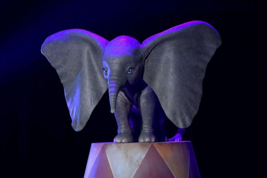 Dumbo: prima foto dal set, sinossi e data d'uscita del live-action Disney! – D23 Expo 2017