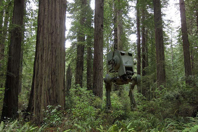 Pianeti foresta (Endor, Takodana)