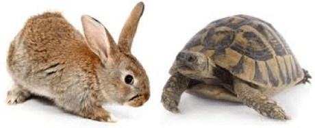 How Liquid is your real estate_hare vs turtle