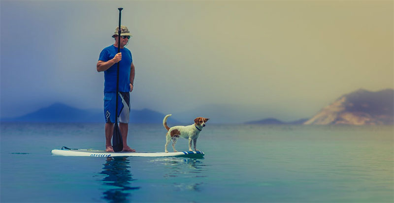 How To SUP With Your Dog