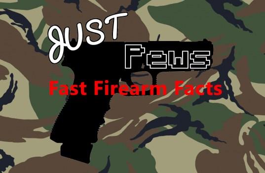 Fast Firearm Facts Header