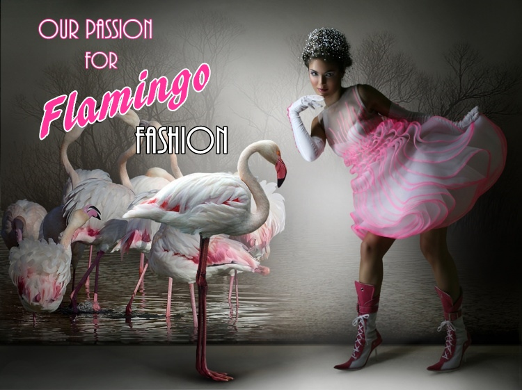Our Passion For Flamingo Fashion