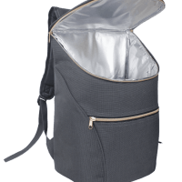 Stylish Insulated Cooler Backpack - for Picnics, Events, Work, Shopping, Travel, Anywhere!