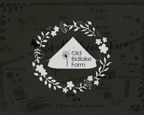 Old Bidlake Farm Camping Bridport Dorset - Website by Just SO Media Lyme Regis Dorset
