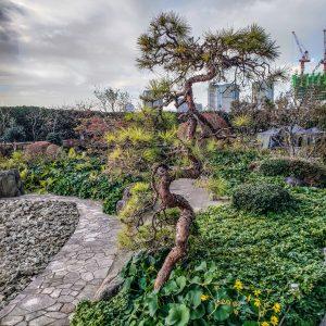 St. Regis Osaka - Butler Service - Rock Garden